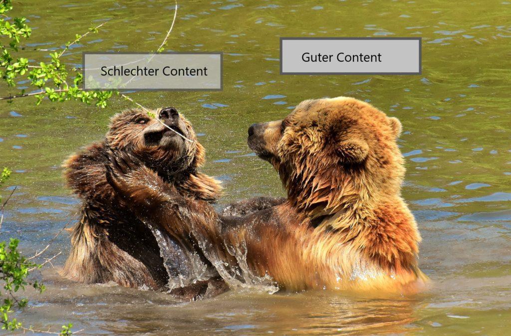 Der Contentbär kämpft mit seinem Bruder schlechter Content, für guten Content